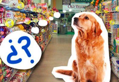 ¿Es sana la comida que le das a tu perro?