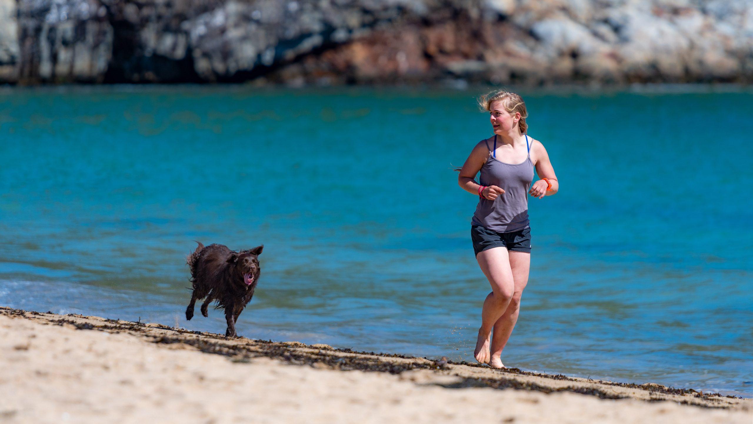 perro corriendo playa