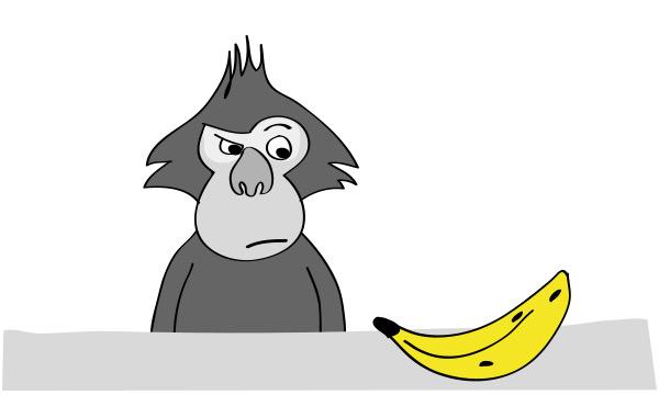 ¿Quieres saber cuál es la mejor dieta para tu perro o gato? Despierta el mono que llevas dentro.