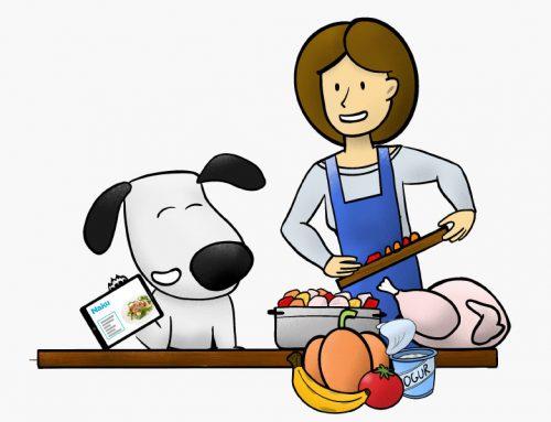 Cómo variar la comida de mi perro